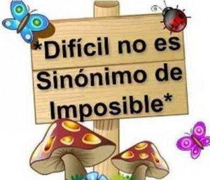 meta dificil no imposible